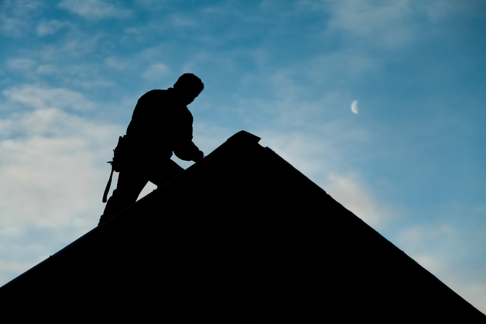 Is Your Fireplace Smoking? Hire a Fireplace Chimney Sweep Now!
