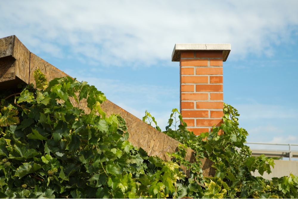 How to Care for Your Chimney in Panama City